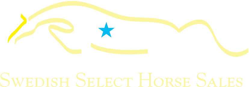 Swedish Select Horse Sales